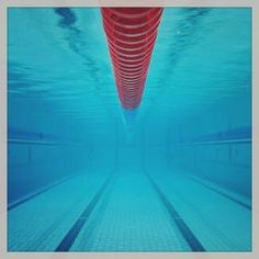 CAN YOU GUESS WHO WE'RE WORKING WITH THIS WEEK?  #Website #WebDesign #WebDesigner #eCommerce #OnlineMarketing #SEO #SocialMedia #SocialMediaMarketing #Marketing #WebHosting #Email #Business #SmallBusiness #WestVicWeb #Warrnambool #PortFairy #Portland #Koroit #Hamilton #Colac #Victoria #Swim #Swimming #Pool #Aquatics #Swimsuit by westvicweb