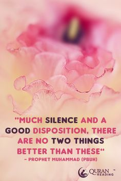 Much silence and a good disposition, there are no two things better than these. - Prophet Muhammad (PBUH)