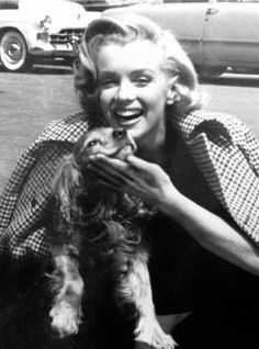 Marilyn Monroe with Cavalier King Charles Spaniel.hmmm, I wonder if given the era of this picture, maybe this could be a Cocker Spaniel? Note the size of the paws, a bit big for a Cavalier. Nonetheless, props to Marilyn for loving dogs! Marylin Monroe, Estilo Marilyn Monroe, Marilyn Monroe Fotos, Viejo Hollywood, Old Hollywood, Hollywood Actresses, Hollywood Glamour, King Charles Spaniel, Cavalier King Charles