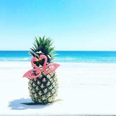 Pineapple at the beach summer beach, summer vibes, pineapple backgrounds, summer backgrounds, Pineapple Backgrounds, Pineapple Wallpaper, Summer Backgrounds, Manga Kiss, Summer Pictures, Cool Pictures, Summer Beach, Summer Vibes, I Love The Beach