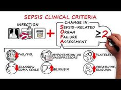 This video presents updated definitions of and clinical criteria for diagnosing sepsis and septic shock based on recommendations from an expert task force. Lpn To Rn, Icu Rn, Glasgow Coma Scale, Nursing Cheat Sheet, Septic Shock, Med Surg Nursing, Nursing School Tips, Nursing Schools, Sepsis