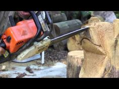Steps to carve a bear : Welcome to the art of chainsaw carving