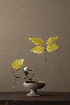 Ikebana by Toshiro Kawase, Could replicate this with using a teapot as a base. :)