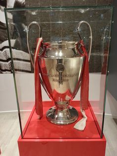 PSV Museum - De Europa Cup 1  1988