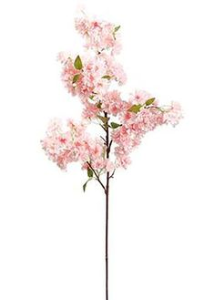 New products are being added weekly to our popular DIY wedding theme collections, artificial flowers and home accents. Stay on budget and on trend, shop Afloral. Wedding Vases, Wedding Flower Decorations, Flower Bouquet Wedding, Spring Flowers, Silk Flowers, Diy Spring Weddings, Cherry Blossom Flowers, Flower Branch, Silk Flower Arrangements