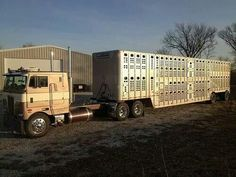 Freightliner Trucks, Peterbilt, Stock Trailer, Cattle Drive, Cab Over, Diesel Cars, Big Trucks, Livestock, Uncle Jack