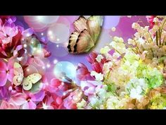 Abraham Hicks , What is happening when you stay so much in receiving mode - 2016 best conversation - YouTube