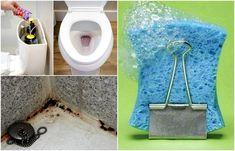 15 простых советов как сделать санузел чистым и свежим / Домоседы