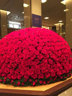 A huge bouquet with over than 1700 red roses. Beautiful Flowers Wallpapers, Beautiful Flowers Garden, Beautiful Roses, Pretty Flowers, Good Morning Flowers Gif, Rose Flower Wallpaper, Large Flower Arrangements, Red Rose Bouquet, Luxury Flowers