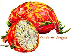 Dragon´s  fruit.  Fruta del Dragón.