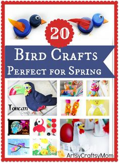 20 Easy Spring Bird Crafts for Kids -  Explore our collection of spring bird crafts for kids that include chicks, peacocks, toucans, parrots, blue birds & many more. all made  using  paper plates, constructions paper and stuff found lying around the home.