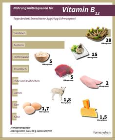 Die österreichische Ernährungspyramide | Ernährung | Pinterest