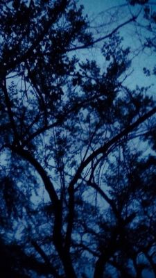 Dark Blue Things Tumblr | www.pixshark.com - Images ...