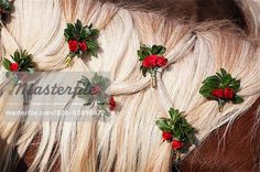 Europe, Germany, Upper Bavaria, Bad Toelz, Decorated mane of a horse  – Image © Westend61 / Masterfile.com: Creative Stock Photos, Vectors and Illustrations for Web, Mobile and Print