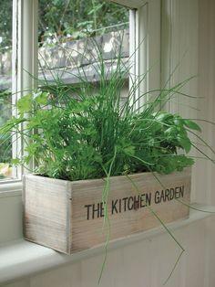 Unwins Herb Kitchen Garden Kit Planter Pot Seeds Flower Indoor Outdoor Flower