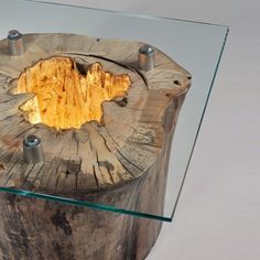 tree stump with light and glass top coffee table