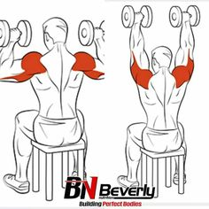 Exercise – 3 Effective Workouts to Burn Fat And Build Muscle Fitness Workouts, At Home Workouts, Muscle Fitness, Mens Fitness, Fitness Diet, Female Fitness, Fitness Goals, Chest Workouts, Dumbbell Workout