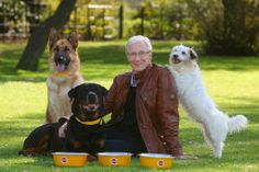Paul O'Grady in hospital after angina attack as friends fear for workaholic TV star Battersea Dogs, Dog Show, Good People, Labrador Retriever, Dog Cat, Adoption, Puppies, Tv, Wild Animals