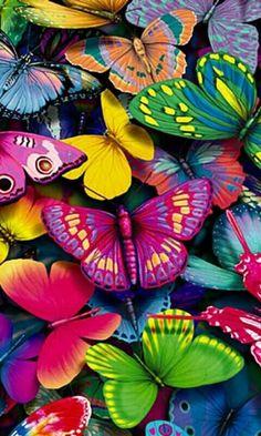 flourishing butterflies