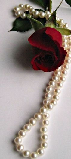 :-:Pearls & Beyond:-: ****Pearls and red rose*