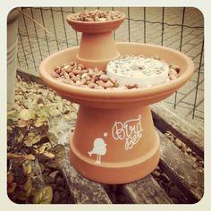 #birdbar #preparingforwinter #garden