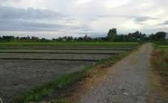 Image result for bugallon pangasinan Country Roads, Image
