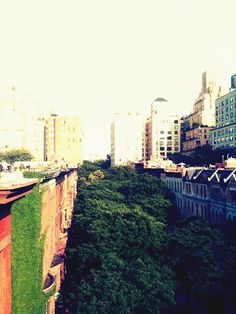 City lovers are still around nature