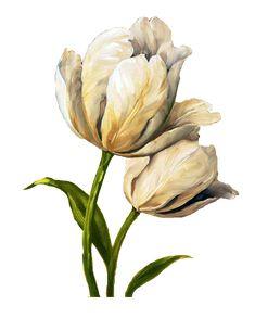 Çiçekler PNG Clipart_Lisa Audit_(69 Adet) | Dekupaj Desenleri