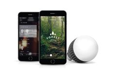 Bolt Wirelessly Connected Smart Bulb | Misfit Online Store