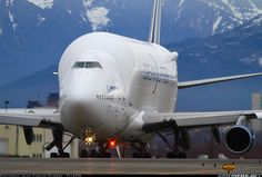 """This is the Boeing Large Cargo Freighter (LCF) or """"Dreamlifter"""", which are converted Boeing 747-400 aircraft that Boeing purchased off the open market and had Everett Aviation Technologies in Taiwan convert to oversize freighters. The Dreamlifter fleet is operated by Evergreen Aviation for Boeing and shuttles parts for the Boeing 787 between suppliers and the Boeing assembly lines in Everett, WA and South Carolina."""