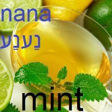 mint #hebrew