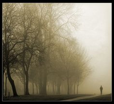 Solitud..... by Chrisconphoto, via Flickr