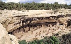 """Colorado at a place called """"MesaVerdeNational park an amazing architectural wonder can be found. Discovered by two cowboys in the late 1800's is a abandoned houses carved into the side of a cliff. These apartment style homes had been long abandon but are believed to have been built by early Indians."""
