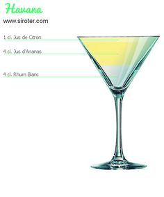 ★ Havana cocktail recipe ★ Practical sheet, preparation, ingredients and advice from the bartender! Bacardi Cocktail, Whisky Cocktail, Daiquiri Cocktail, Cocktail Shaker, Cocktail Drinks, Cocktail Tequila, Cocktail Mix, Vodka Martini, Vodka Cocktails
