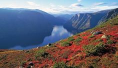 View of the Geirangerfjord in Norway - Photo: Fritjof Fure/Fjord Norway
