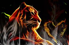 TIGER FRACTAL.....PARTAGE OF ANONYMOUS ART OF RÉVOLUTION ON FACEBOOK.....