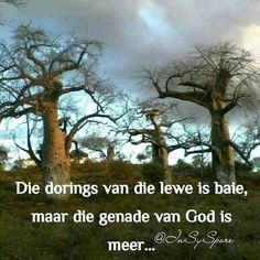 Scripture Verses, Bible, Afrikaanse Quotes, Goeie Nag, True Words, Grief, Life Quotes, Faith, God