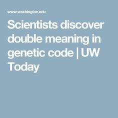 Scientists discover double meaning in genetic code  |  UW Today