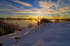 Winter Ponds in Fort Collins, Colorado