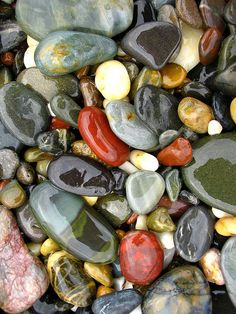 "flora-file: "" the gathering ground (by *omnia*) "" Rock And Pebbles, Rocks And Gems, Minerals And Gemstones, Rocks And Minerals, Rock Background, Beautiful Rocks, Beach Stones, Nature Wallpaper, Stone Art"