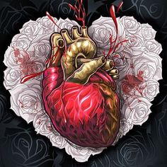 Anatomical and valentine hearts by RoD78