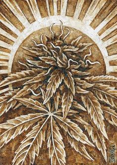 Cliff Maynard Roach Paper Art   Marijuana Art   Medical Marijuana Quality…