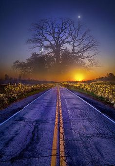 ~~What Dreams May Come • magical tree and mystical road • Wisconsin Horizons by Phil Koch~~