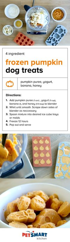 4 Ingredient Frozen Pumpkin Dog Treats. Blend, pour, and freeze. Just a few easy steps to a pumpkin treat your pup will love!