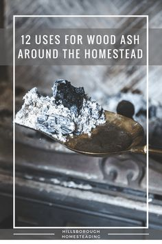 Keeping warm this winter with a fire? Put that left over wood ash to good use around the Homestead!