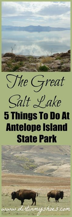 These are some awesome tips for visiting the Great Salt Lake. I will definitely put this on my bucket list!