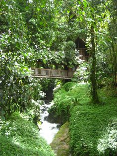 Rios Tropicales Lodge- from Costa Rica Experts off the beaten path vacations