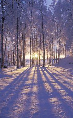 Invernale.