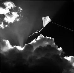 l'aquilone si alza con il vento contrario.. mai con quello a favore