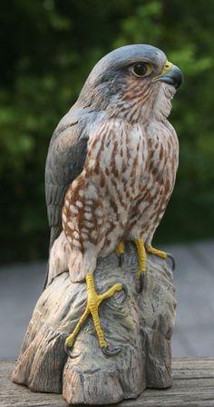 Black Merlin by Randal Martin Pretty Birds, Beautiful Birds, Animals Beautiful, Bird Sculpture, Animal Sculptures, Merlin Bird, Animals And Pets, Cute Animals, Wood Carving Art